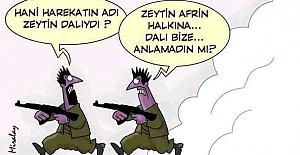 Başbakan'da bu Afrin karikatürünü paylaştı