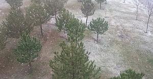 Edirne ilk karla beyaza büründü
