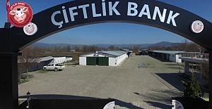 Çiftlik Bank sahibi kandırmak için M. Kemal'i kullanmış