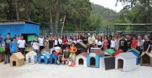 Öğrenciler 'sevimli dostlara' kulübe yaptı