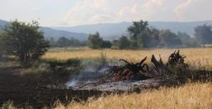 Erzincan'da arpa tarlasında yangın