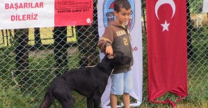 Küçük çocuğun köpekle dostluğu