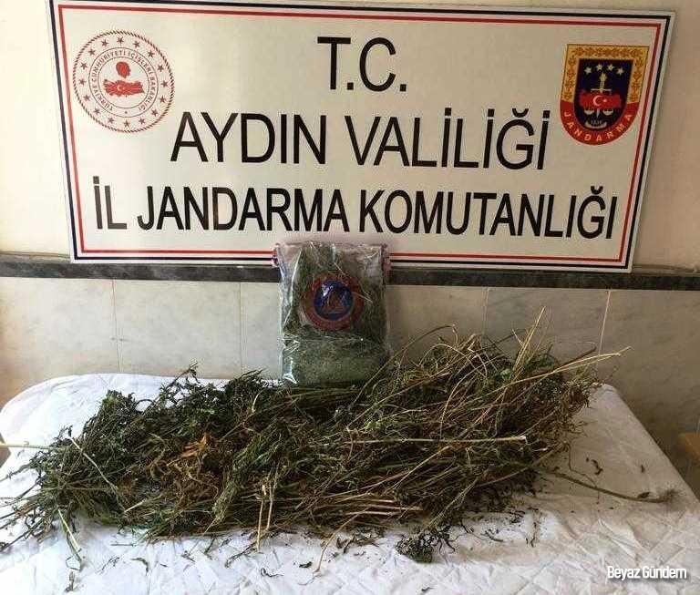 Kuyucak ve Karacasu'da uyuşturucu operasyonları: 3 tutuklama