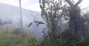 Samandağ'da bitki örtüsü yangını