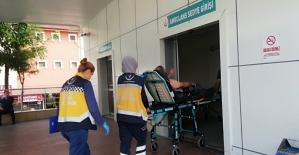 Ava giden vatandaşı arılar hastanelik etti