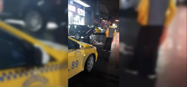 (Özel) İstanbul'da pitbull dehşeti kamerada