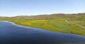 (Özel) Yeşilin, mavinin ve sarının buluştuğu Keşiş Gölü hayran bırakıyor
