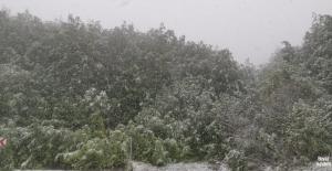 Yaralıgöz Dağı'nda Mayıs ayında kar sürprizi