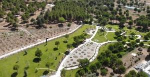850 türü barındıran PAÜ Botanik Bahçesi göz kamaştırıyor