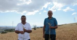 Kocasinan'da 'Temiz tarla, Temiz Ürün' Kampanyası başlatıldı