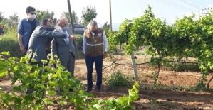 Vali Karadeniz Alaşehir'de incelemelerde bulundu