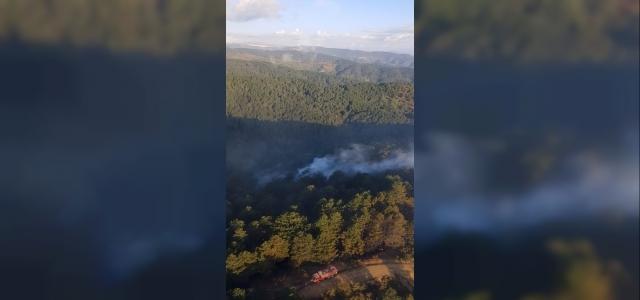 20 hektar ormanlık alan yandı