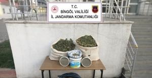Bingöl'de 21 kilogram esrar ve kenevir tohumu ele geçirildi