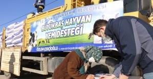 Büyükşehir'den 152 bin ton yem desteği