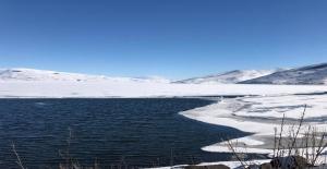 Çıldır Gölü tarihinde ilk defa Ocak ayında çözüldü