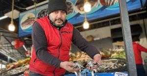 Düzceli balıkçılar vatandaşa ucuz balık yedirmek için yasağın kalkmasını bekliyor