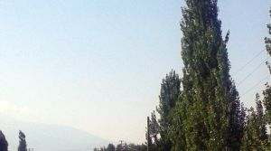 Ana köyden ayrılıp 'Orta Alican' adıyla bağımsız köy oldu