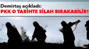 Demirtaş: PKK o tarihte silah bırakabilir